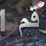 خصائص الأرقام : خصائص مسار الحياة الرقم 11