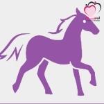 الأبراج الصينية : برج الحصان