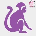 الأبراج الصينية : برج القرد