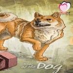 كل ما يخص برج الكلب الصيني (التوافق،العاطفة،المال،الصحة،المشاهير)