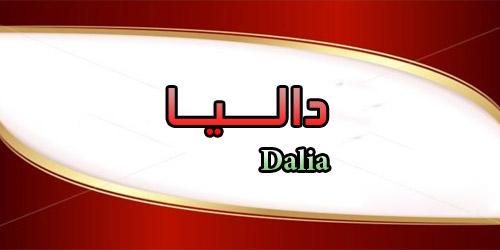 داليا